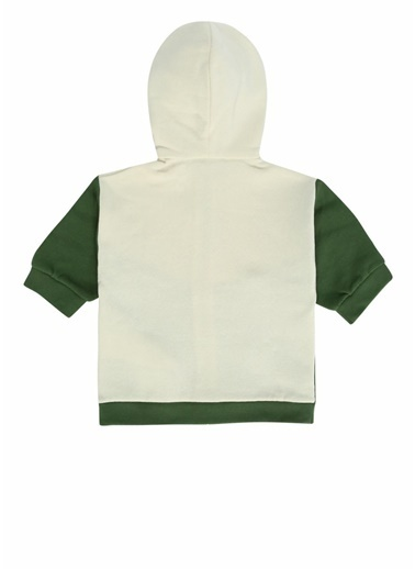 GUCCI Sweatshirt Yeşil